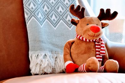 Rudolf Thief Red Nose Burglar