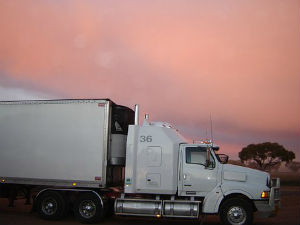 immigrant truck